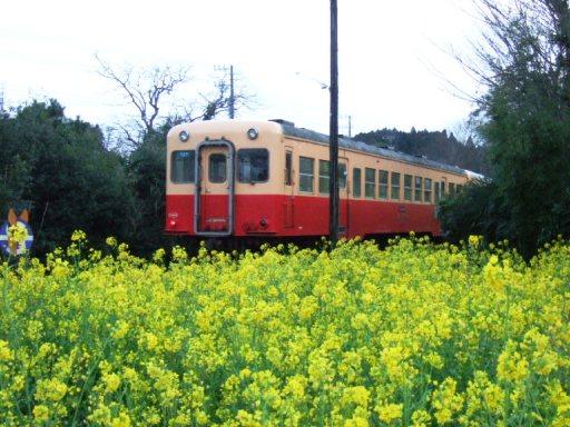 里見駅06