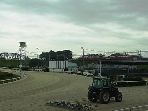 笠松競馬場08