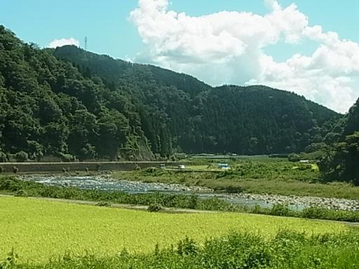 自然園前~山田間03
