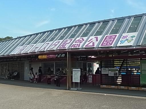 花フェスタ記念公園01