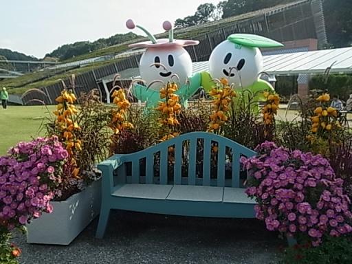 花フェスタ記念公園02