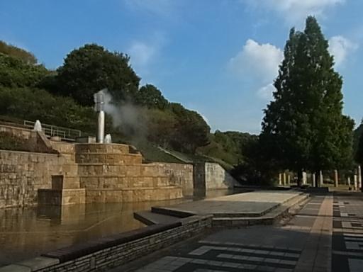 花フェスタ記念公園03