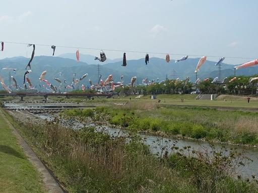 相川水辺公園01