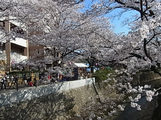 麻生川04