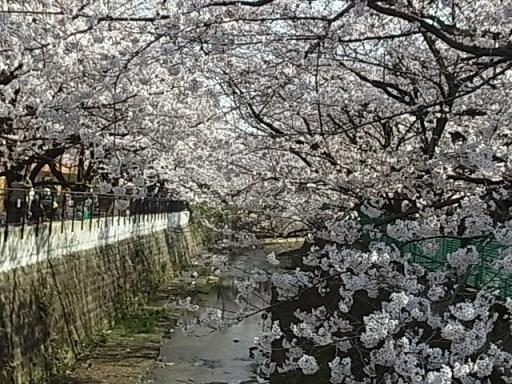 麻生川06