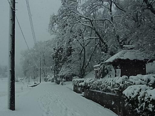 熊野神社付近(雪)02