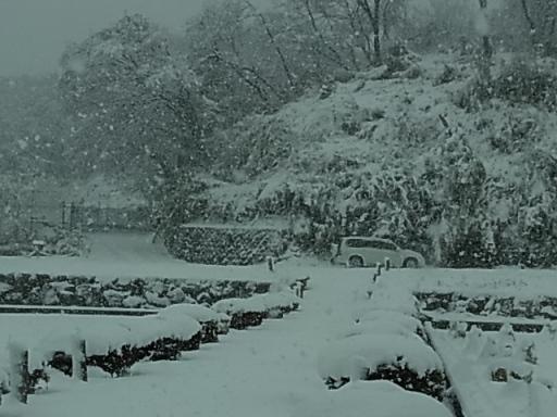寺家ふるさと村(雪)06