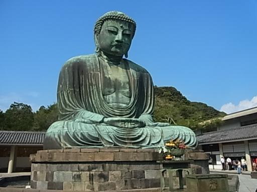高徳院:銅造阿弥陀如来坐像(大仏)
