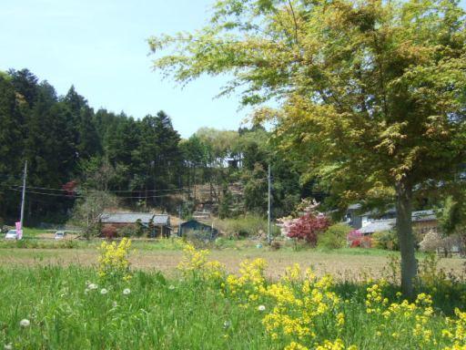横瀬町02