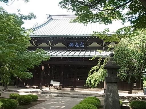 豪徳寺02